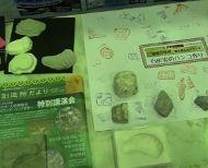 ⑥南alps伊那_石灰岩判子作りDSC02466Ed