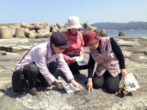 ◎香住海岸の足跡化石_3282