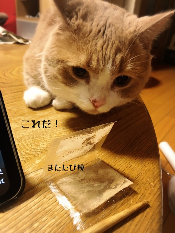 IMG_3688