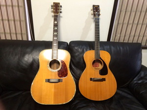 綺麗に磨かれたギター達