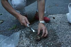道路でサザエを割る男2