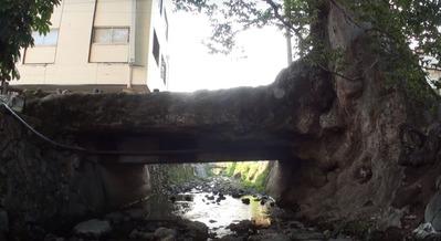 木の根橋jpg