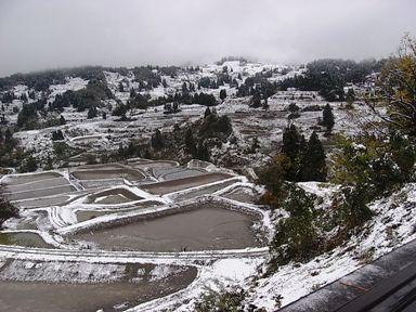 山古志村の棚田