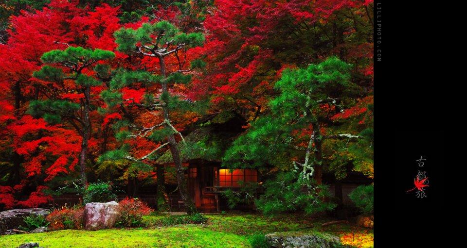 京都5(拡大表示)