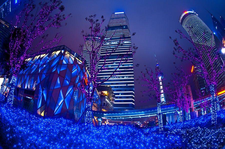上海6(拡大表示)