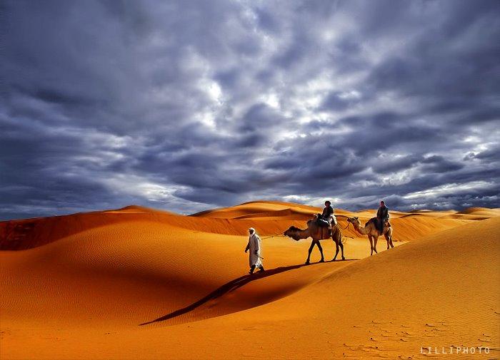 モロッコ2(拡大表示)