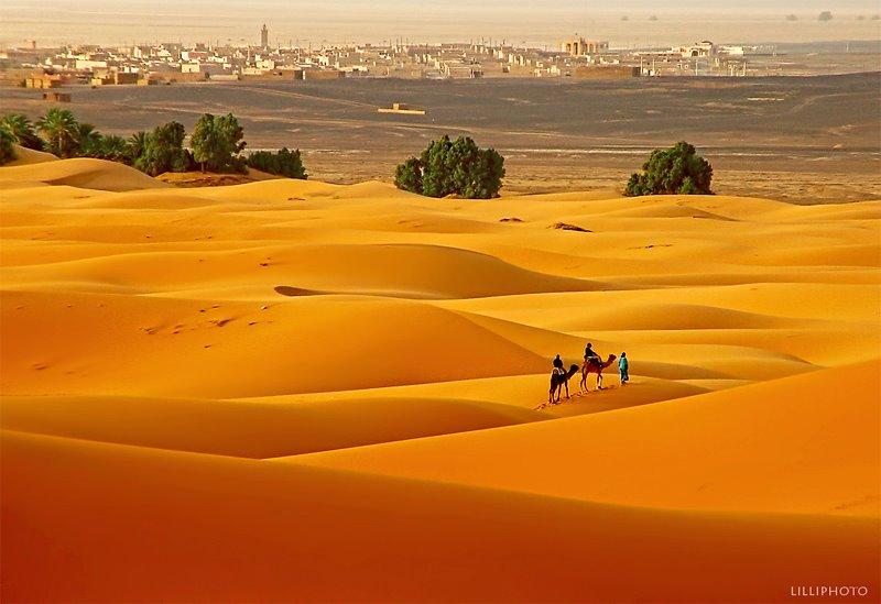 モロッコ4(拡大表示)