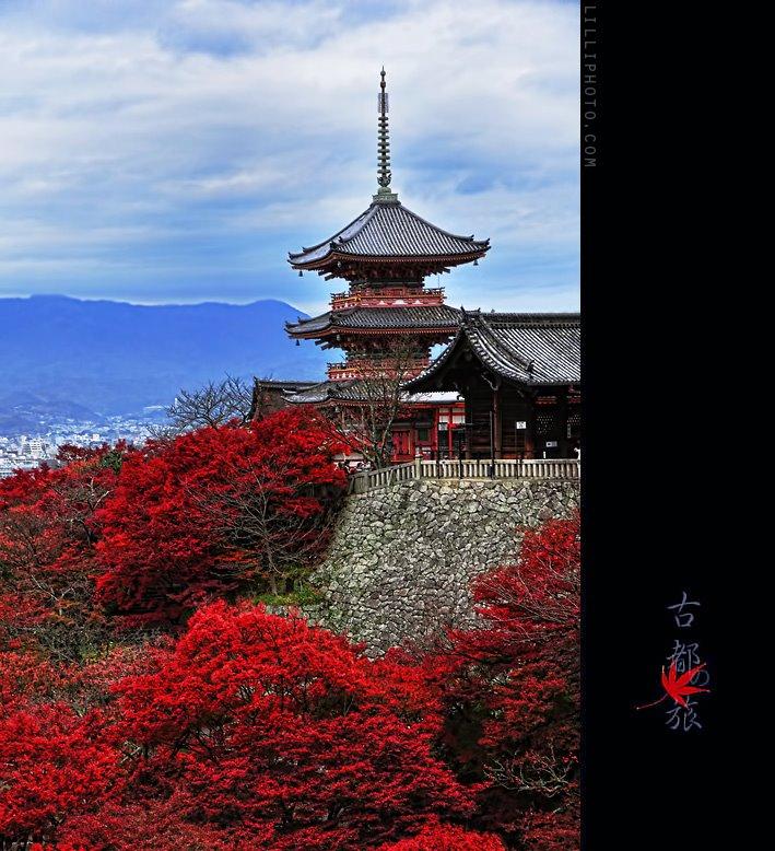 京都6(拡大表示)