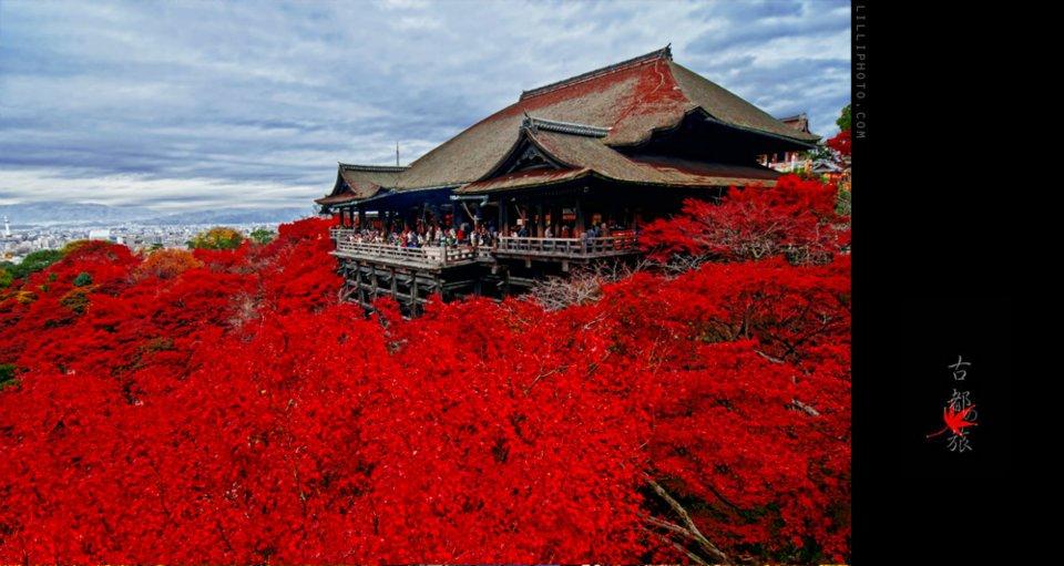 京都9(拡大表示)