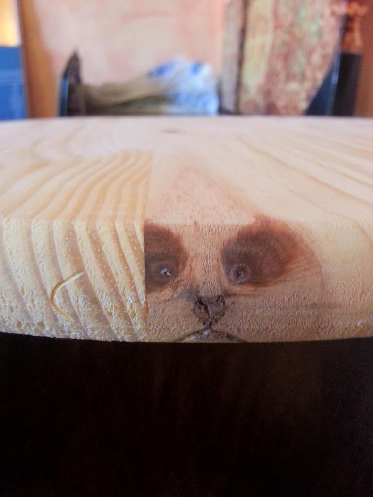 木材にタヌキ(拡大表示)