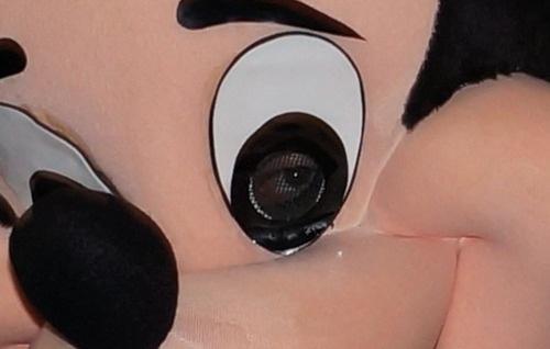 ミッキーの目(拡大表示)