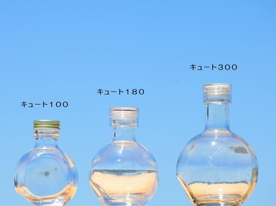 ハーバリウム瓶〜キュート300