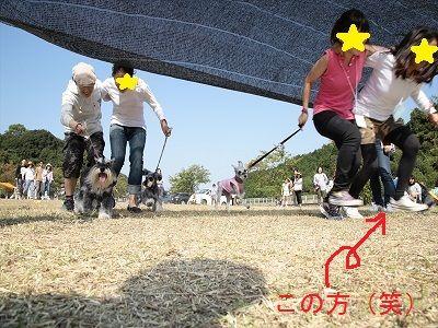 九州シュナ054