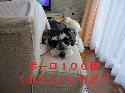 DSC01511