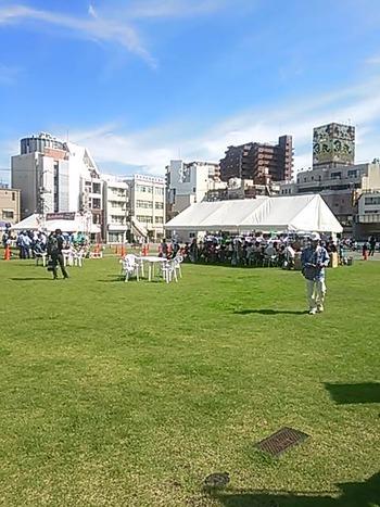 駅前広場の芝生