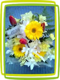 シバタ君のお花