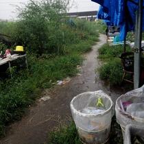 大雨2、9、15,25