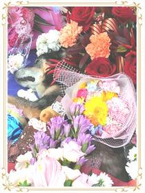 ジョリーとお花4
