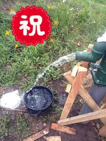直ちゃん井戸10