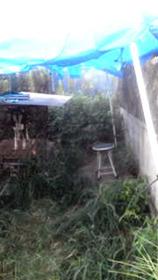 バンビハウスと椅子