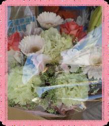 小春のお花