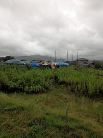 サスケカム台風タープ9,17,25、