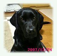 20071224