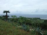 沖縄本島も見える