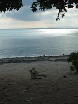 夕暮れのカイジ浜