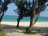 500_東村のウッパマビーチ