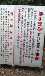 みたらし2011_5