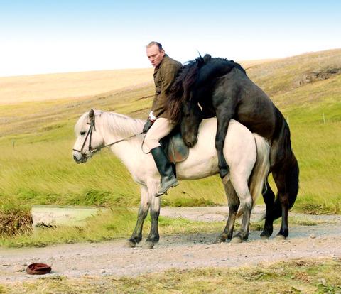 馬々と人間たちメイン