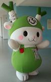 PICT3883fukkachan