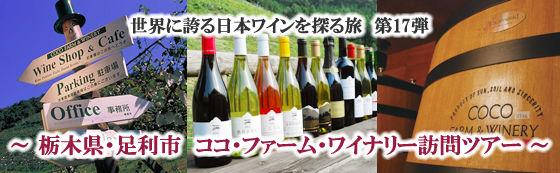 日本全体が元気になろう!いよいよ4月、サンク・センスでも沢山の催しを企画しています!