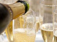 2014.8.30(土)は屋形船ワインパーティーで大人のゆったり時間を粋に楽しみませんか?