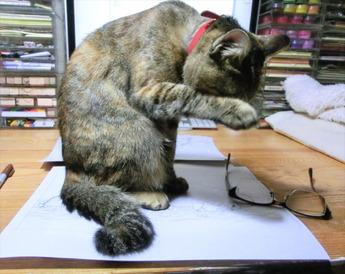 原稿の上でくつろぐのやめて