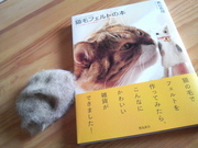 猫毛フェルトの本.jpg