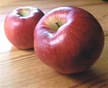 ひろふねりんご2