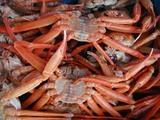 久慈漁港070315b