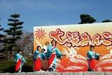 大洗あんこう祭り08-11-23(6)郷土芸能磯節