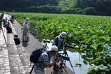蓮親沢の「池」