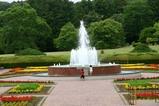 バラ09-05-30県植物園