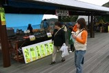 す水府村竜神峡鯉のぼりまつり1