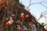 鳥追い小屋09-01-17上河合町(6)地域性