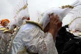 常陸国YOSAKOI祭り10-5-23(16)CHIよREN北天魁