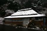 白鳥古徳沼08-02-03雪