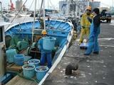 久慈漁港070315A