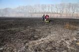 菅生沼の野焼き火消し