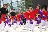 常陸の国YOSAKOI祭りe常陸の国ヨサコイ連