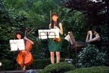 西山の里花菖蒲まつり09-06-20(4)Cielシェル クラシック